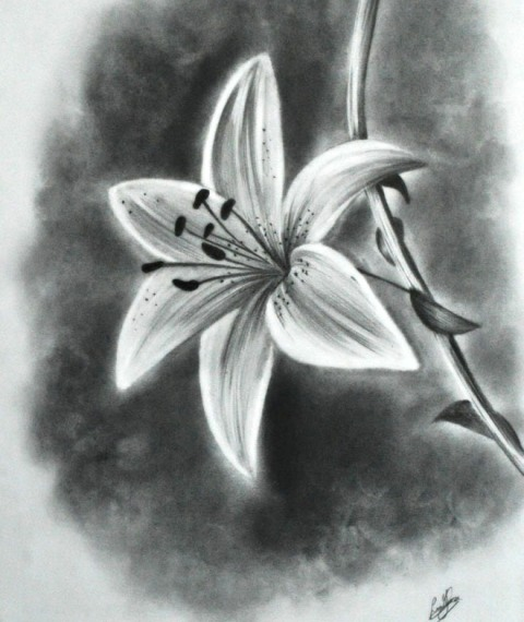 Pictures Of Pretty Flowers To Draw