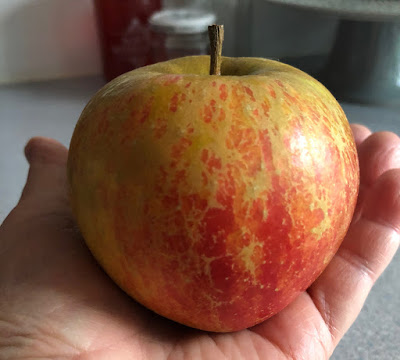 Large apple in palm of hand