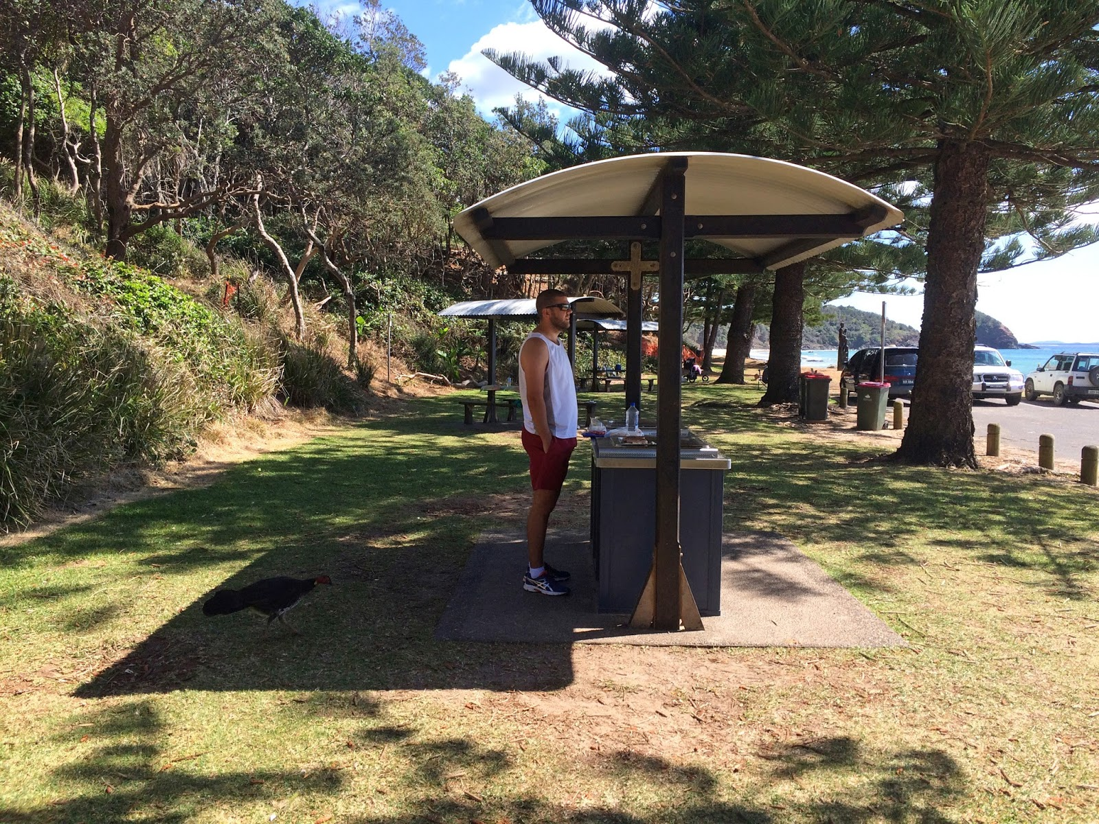 Free BBQs Shelley Beach Port Macquarie