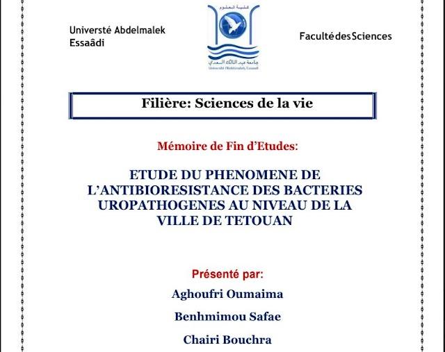 PFE : ETUDE DU PHENOMENE DE L ANTIBIORESISTANCE DES BACTERIES UROPATHOGENES AU NIVEAU DE LA VILLE DE TETOUAN