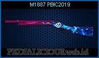 M1887 PBIC2019
