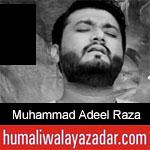 https://www.humaliwalayazadar.com/2019/10/muhammad-adeel-raza-nohay-2020.html