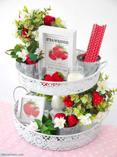 DIY Strawberry Farmhouse Tied Tray Decor