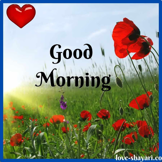 good morning images in love