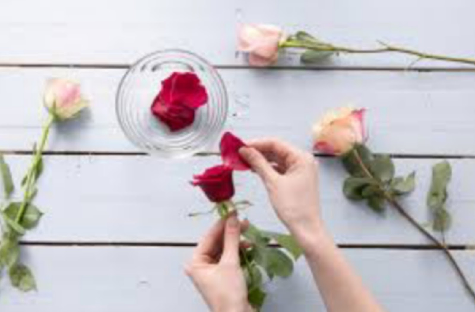 how to get glowing skin naturally pink rose to beauty - Glows