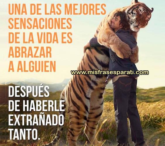 Una de las mejores sensaciones de la vida es abrazar a alguien, después de haberle extrañado tanto