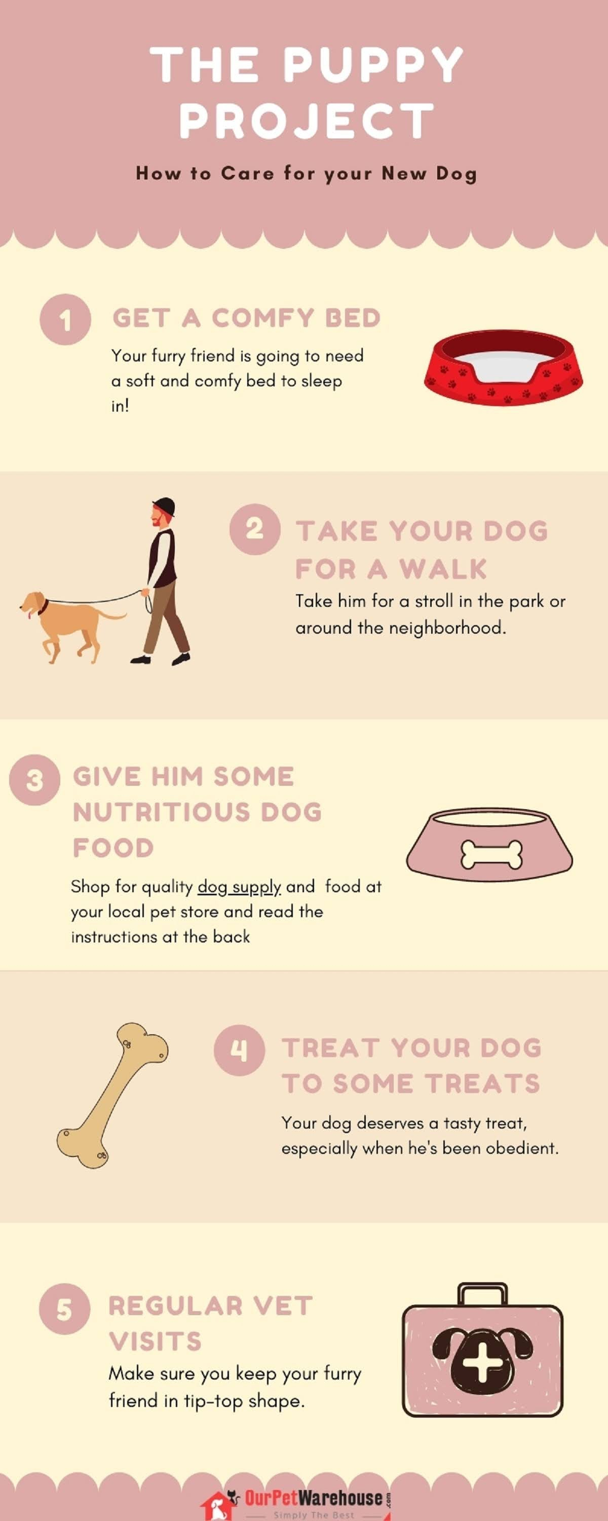 how-to-care-for-your-new-dog-infographic