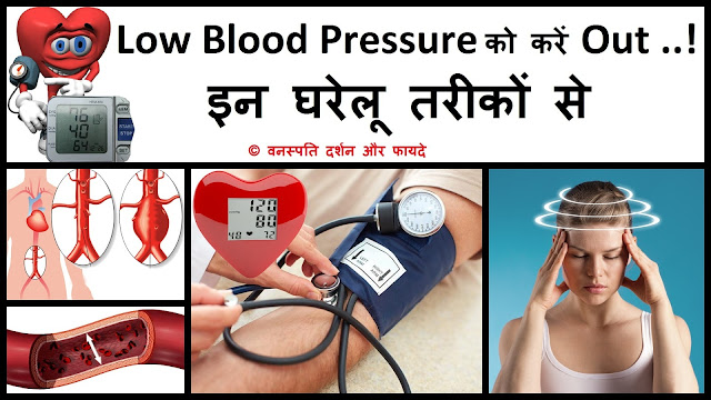 Low Blood Pressure ko Karen Out Inn Ghrelu Tarikon se