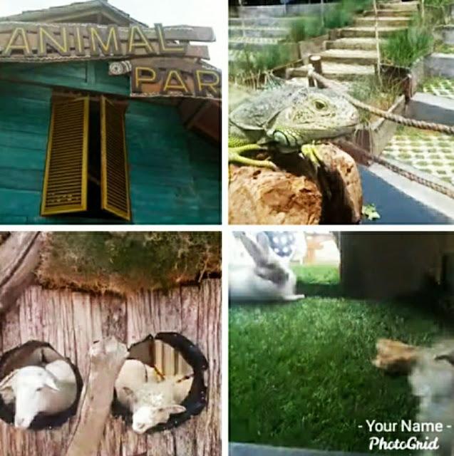 Animal park wisata the great asia afrika