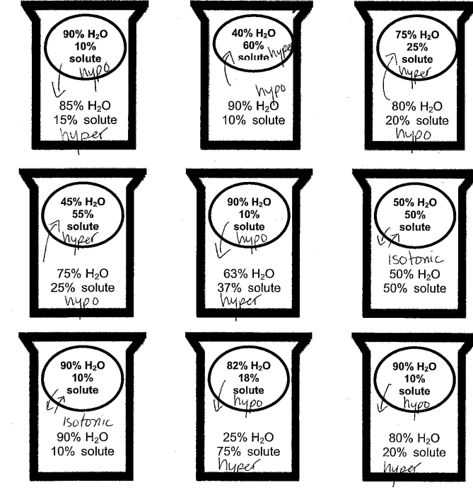 biology diffusion and osmosis worksheet answer key pdf, osmosis worksheet pdf, osmosis worksheet answer key page 2, osmosis part 2 worksheet answers, osmosis assignment answer key, osmosis practice worksheet answers, osmosis worksheet answer key part a