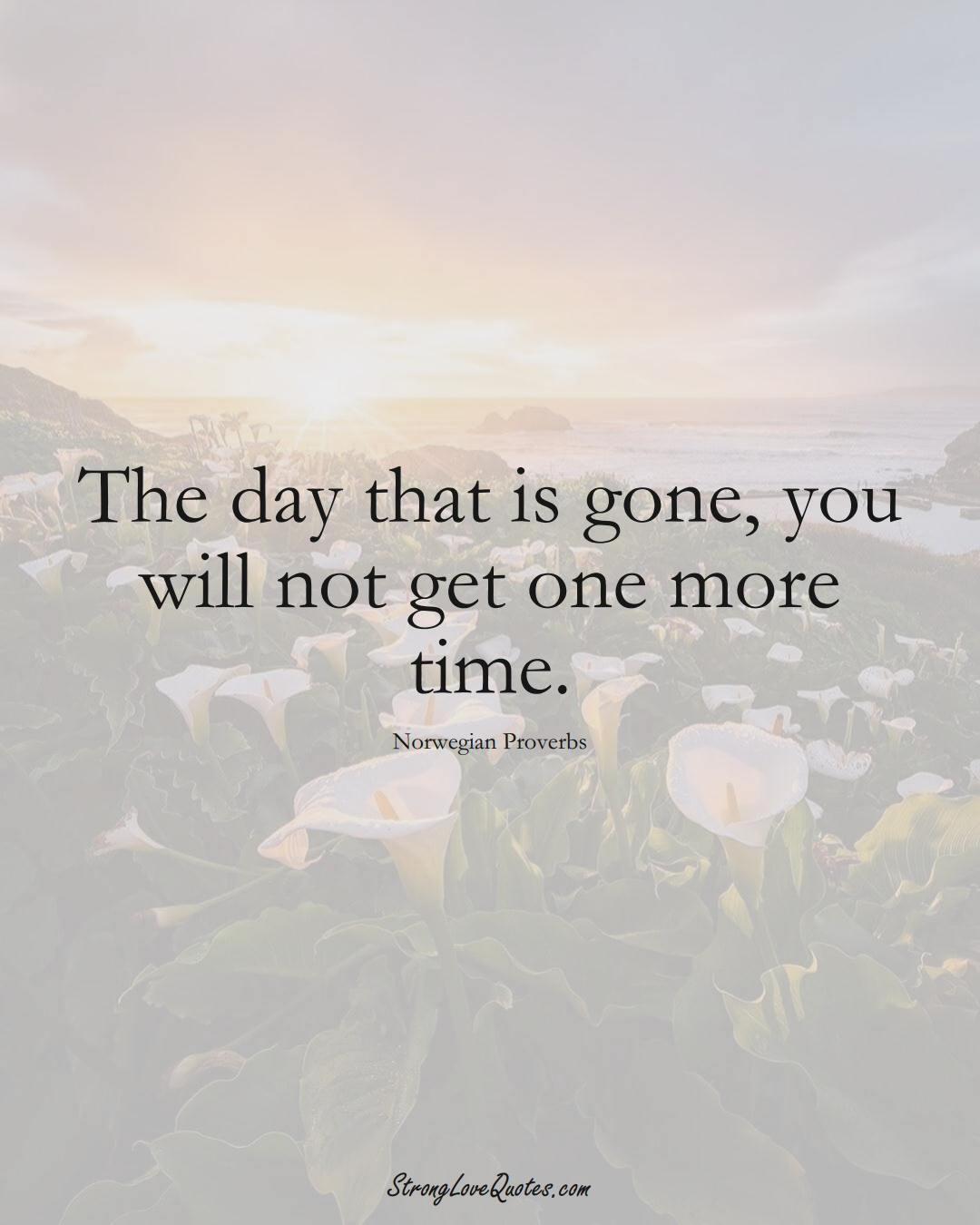 The day that is gone, you will not get one more time. (Norwegian Sayings);  #EuropeanSayings