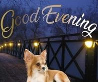 {NEW} Good Evening Images