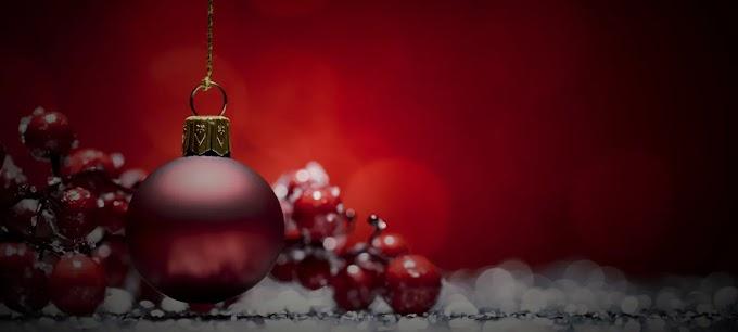 Amazing Christmas Facts!