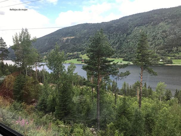 tren_bergen