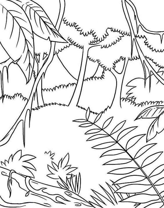 Tranh tô màu phong cảnh rừng cây
