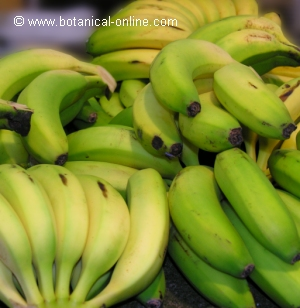 cual es la fruta mas rica en magnesio