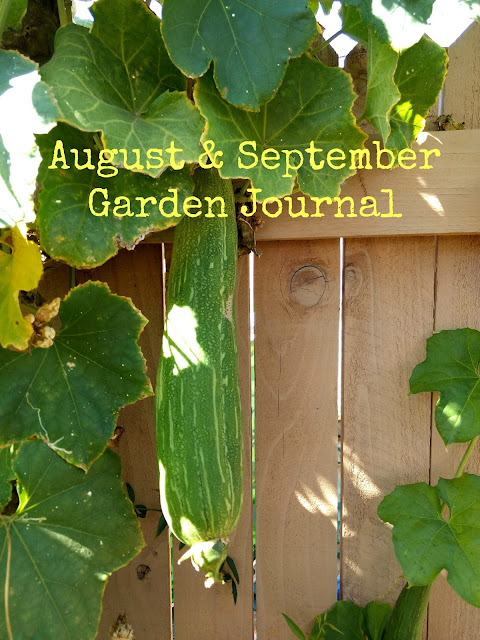 August & September Garden Journal