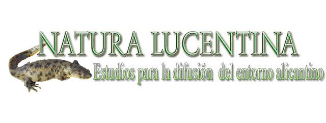 http://www.bibliografia.hyla.es/Publicaciones/Publicaciones.htm