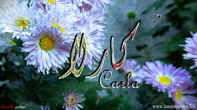 معنى اسم كارلا وصفات حاملة هذا الاسم Carla