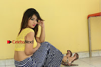 Cute Telugu Actress Shunaya Solanki High Definition Spicy Pos in Yellow Top and Skirt  0398.JPG