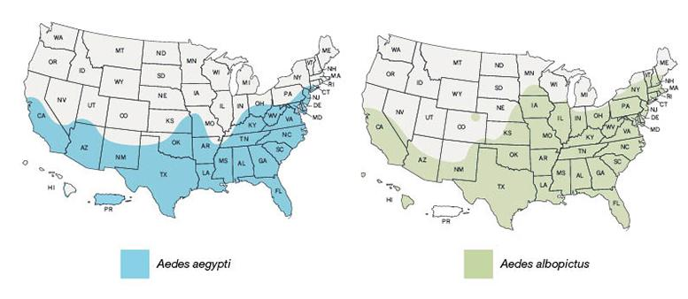 Avian Flu Diary: CDC Updated Aedes Mosquito Vector Maps