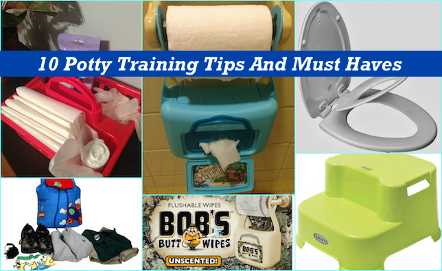 10 tips to potty training 2014