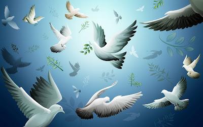 السلم والسلام