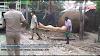 Corona fear in Bongaigaon- A person in Panchagaon, Boitamari died during Home Quarantine.