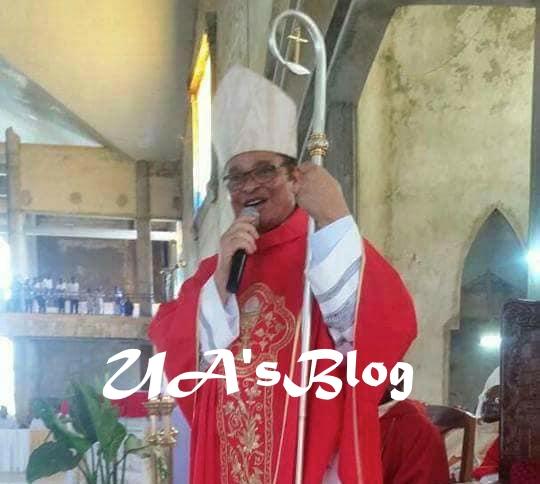 Ahiara Catholic Diocese crisis ends