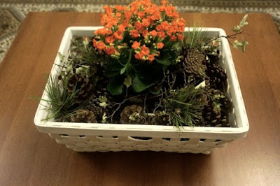 Nature basket 1