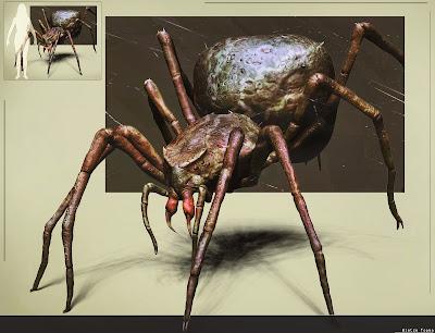 Blackwood spider by Wietze Fopma