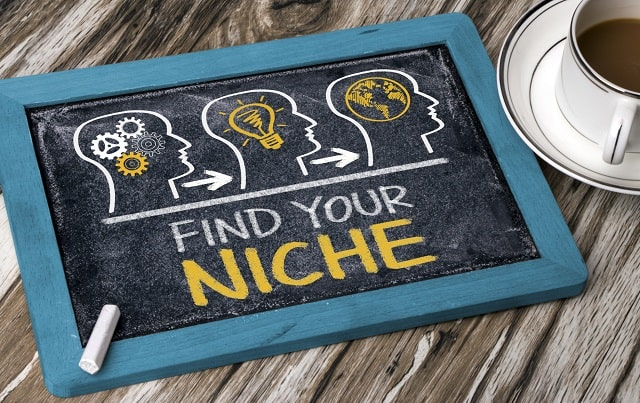 niche strategy business opportunities