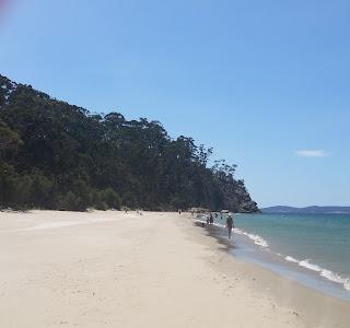 Tyndall beach.