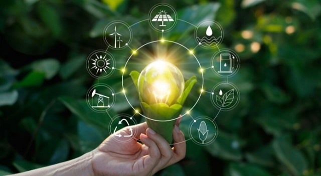 green company ways to be sustainable business eco-friendly startup sustainability