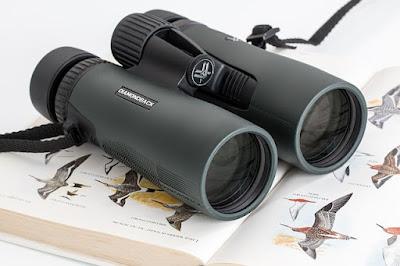 Photo of binoculars resting on a bird book