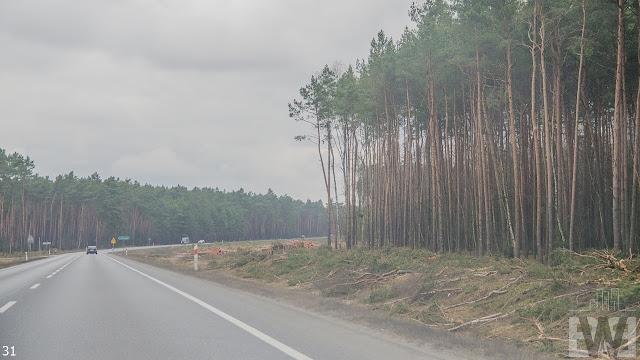 Wycinka drzew pomiędzy Białymi Błotami a Pawłówkiem
