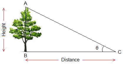 Example of Height and Distance of a tree.