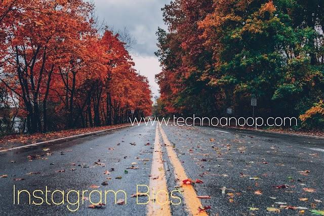 100+ CAPTIONS FOR INSTAGRAM BIOS