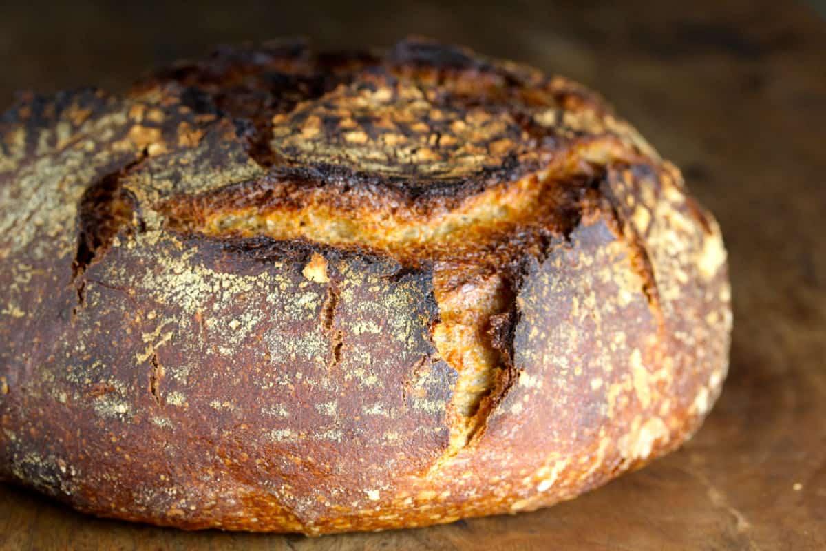 Stout, Rye, and Pumpkin Sourdough Loaf.