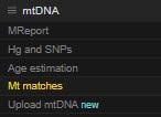 YFull mtDNA matches