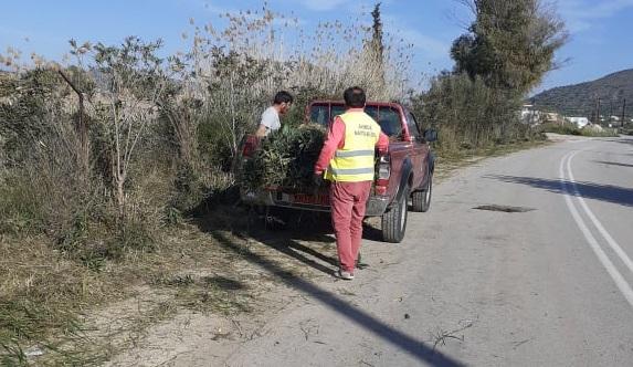 Δήμος Ναυπλιέων: Εργασίες καθαριότητας και καλλωπισμού του δρόμου από Δρέπανο προς Βιβάρι