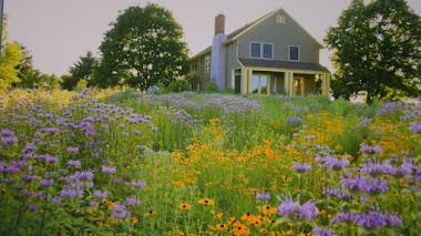 Paisajes y jardines ecosostenibles. Garden Revolution