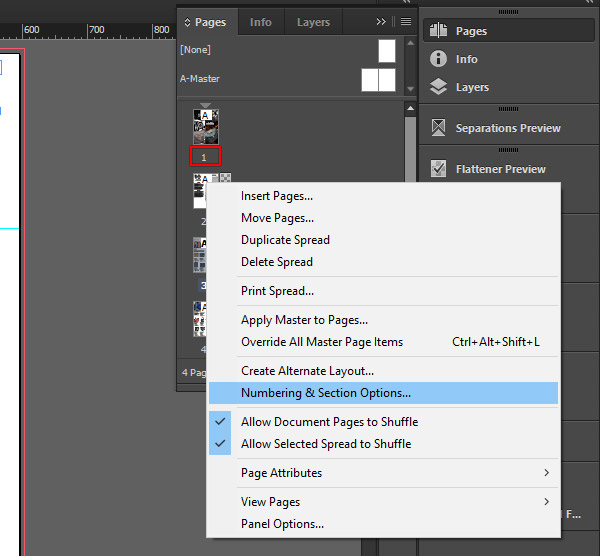 Numbering and section options in InDesign