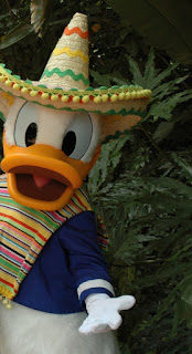 Sombrero Donald Mexico Epcot Disney World
