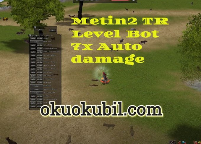 Metin2 TR Level Bot  7x Auto damage Anti Ban + Hızlı Vurma Hilesi İndir 2020