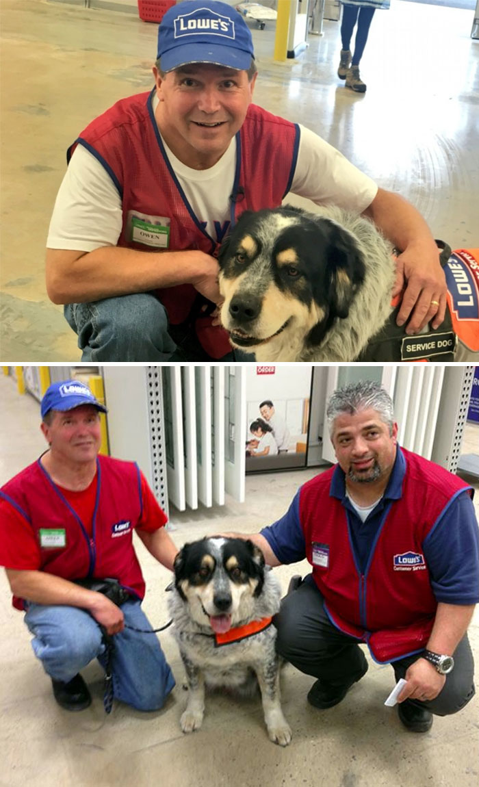 40 Times 2016 Restored Our Faith In Humanity - This Man Couldn't Get A Job Because Of His Service Dog But This Store Hired Them Both