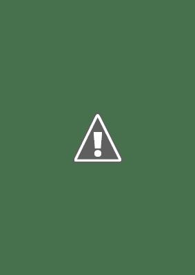 Alltid på en tisdag / Always on a Tuesday. 2004.