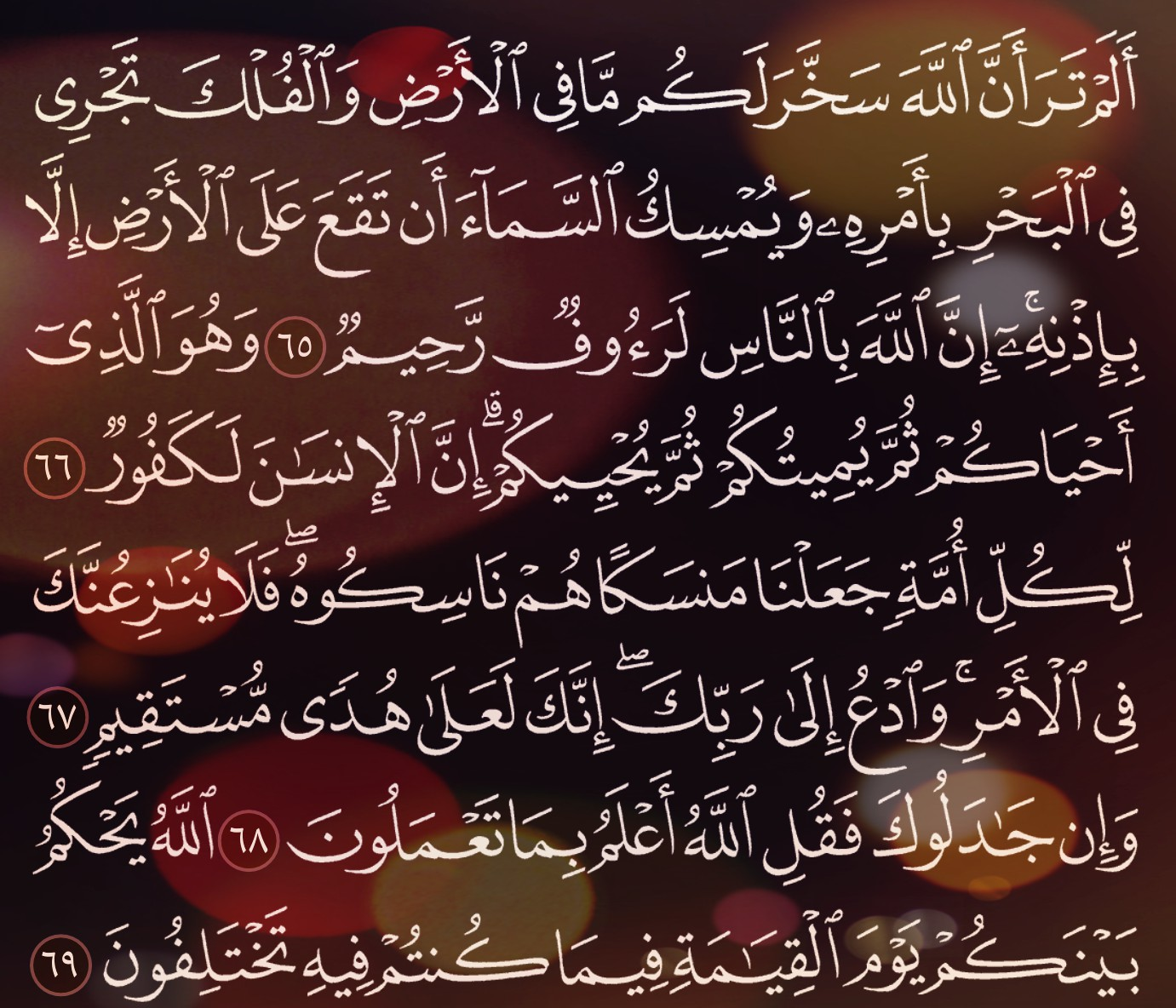 شرح وتفسير سورة الحج Surah Al Hajj ( من الآية 61 إلى الاية 72 )