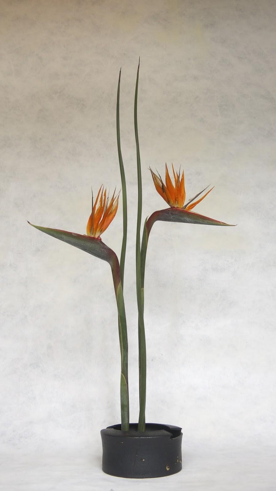 Roadside Ikebana Double Helix