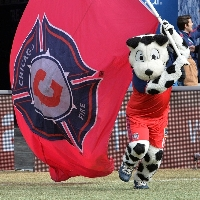Sparky, the Chicago Fire mascot